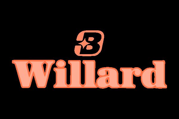 baterías-willard